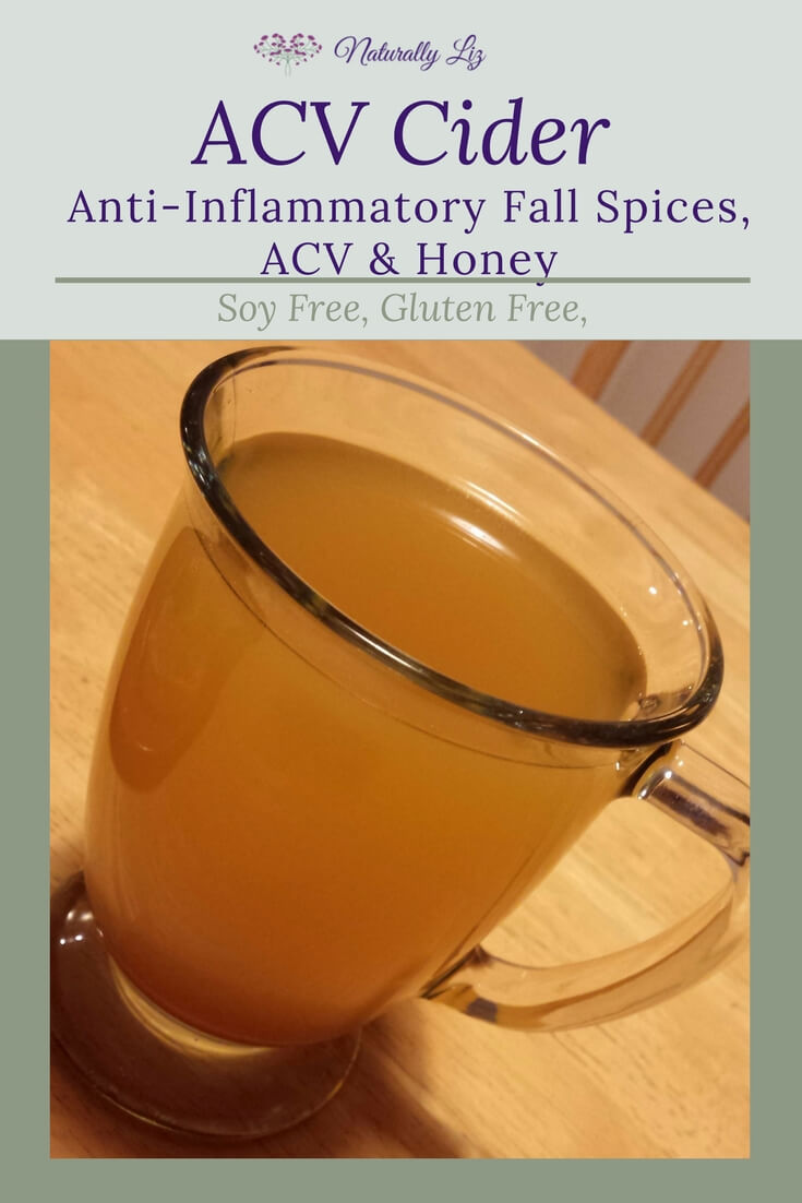 ACV Cider with Anti-Inflammatory Fall Spice Blend, Honey, and ACV! Yum!!!