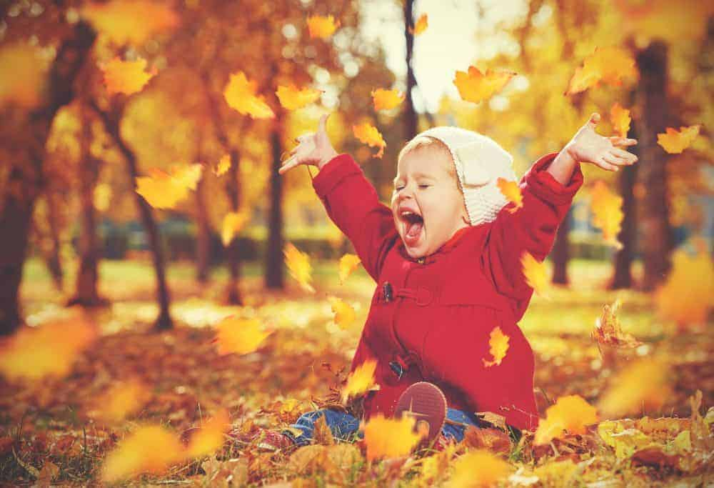 21 Fun Fall Activities for Toddlers