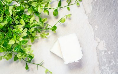 A Beginner's Guide to Toxin Free Living