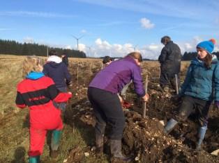 Modern day: Tree Planting with Eadha Enterprise near Kilmarnock (2015). ©Richard Thompson