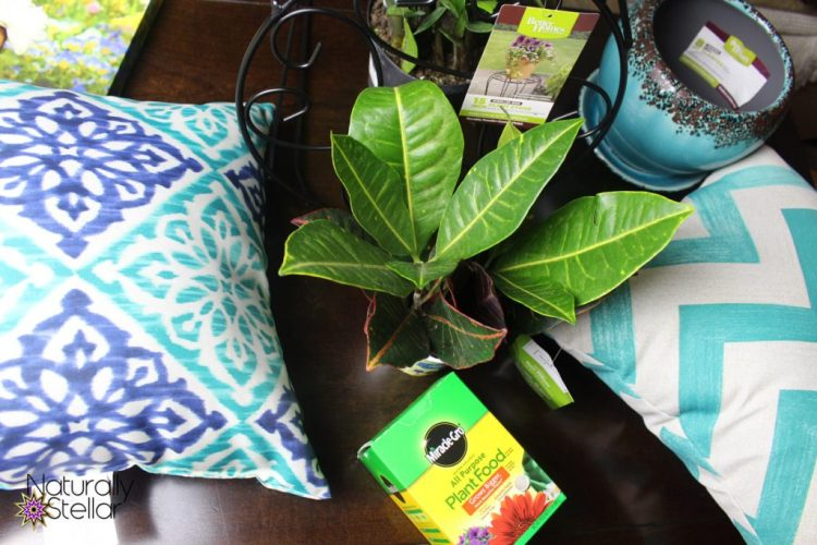 Inexpensive Ways To Summerize Your Small Apartment   Naturally Stellar