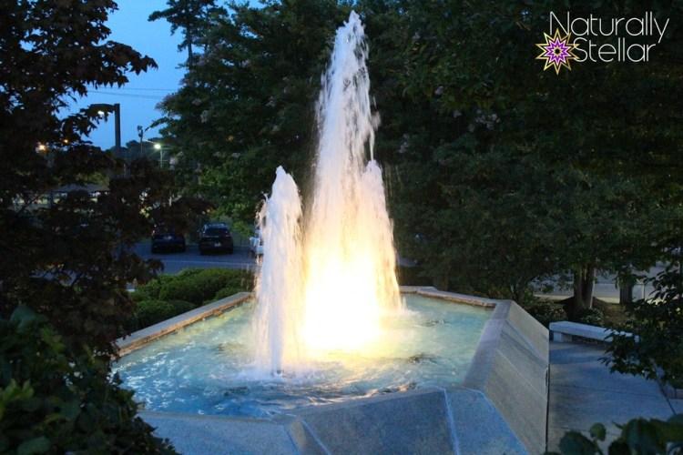 Riverview Hospital Fountain - Gadsden, AL | Naturally Stellar