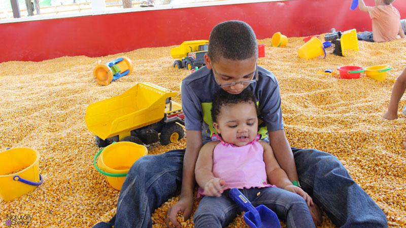 Lucky Ladd Farms Corn Pit   Naturally Stellar
