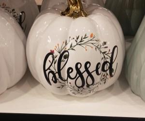Thanksgiving Holiday Prep | Budget, Menu and Shopping Tips | Naturally Stellar