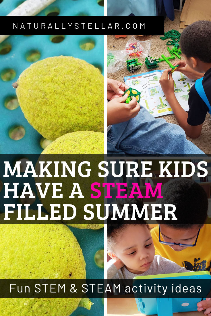 STEAM and STEM activity ideas | Naturally Stellar