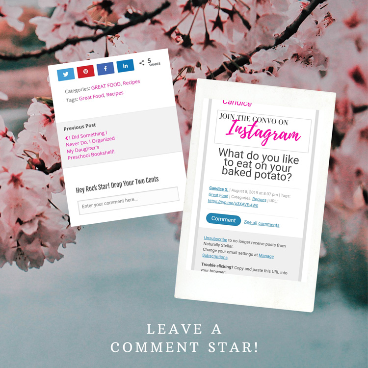 How to leave comments on Naturally Stellar blog posts | Naturally Stellar