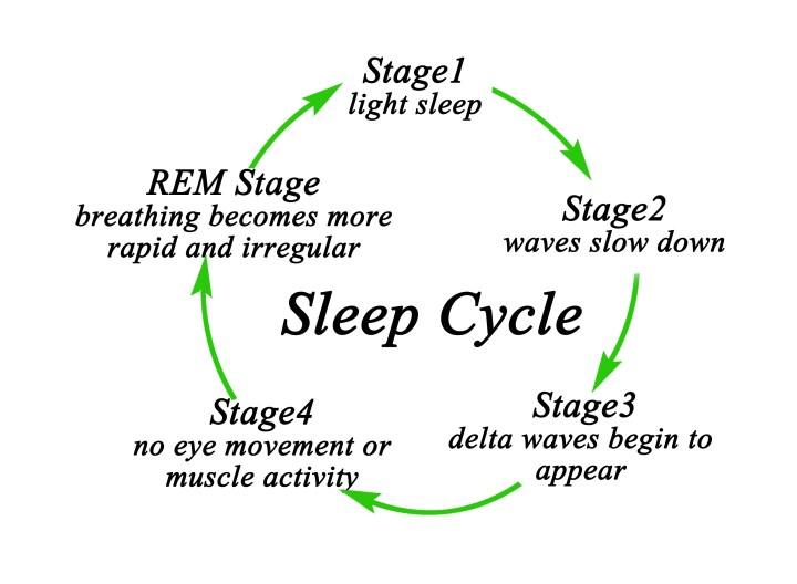 Sleep  Naturally You  naturallyyoufl.com