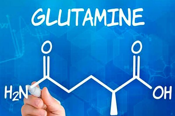 Glutamina para la acidez estomacal