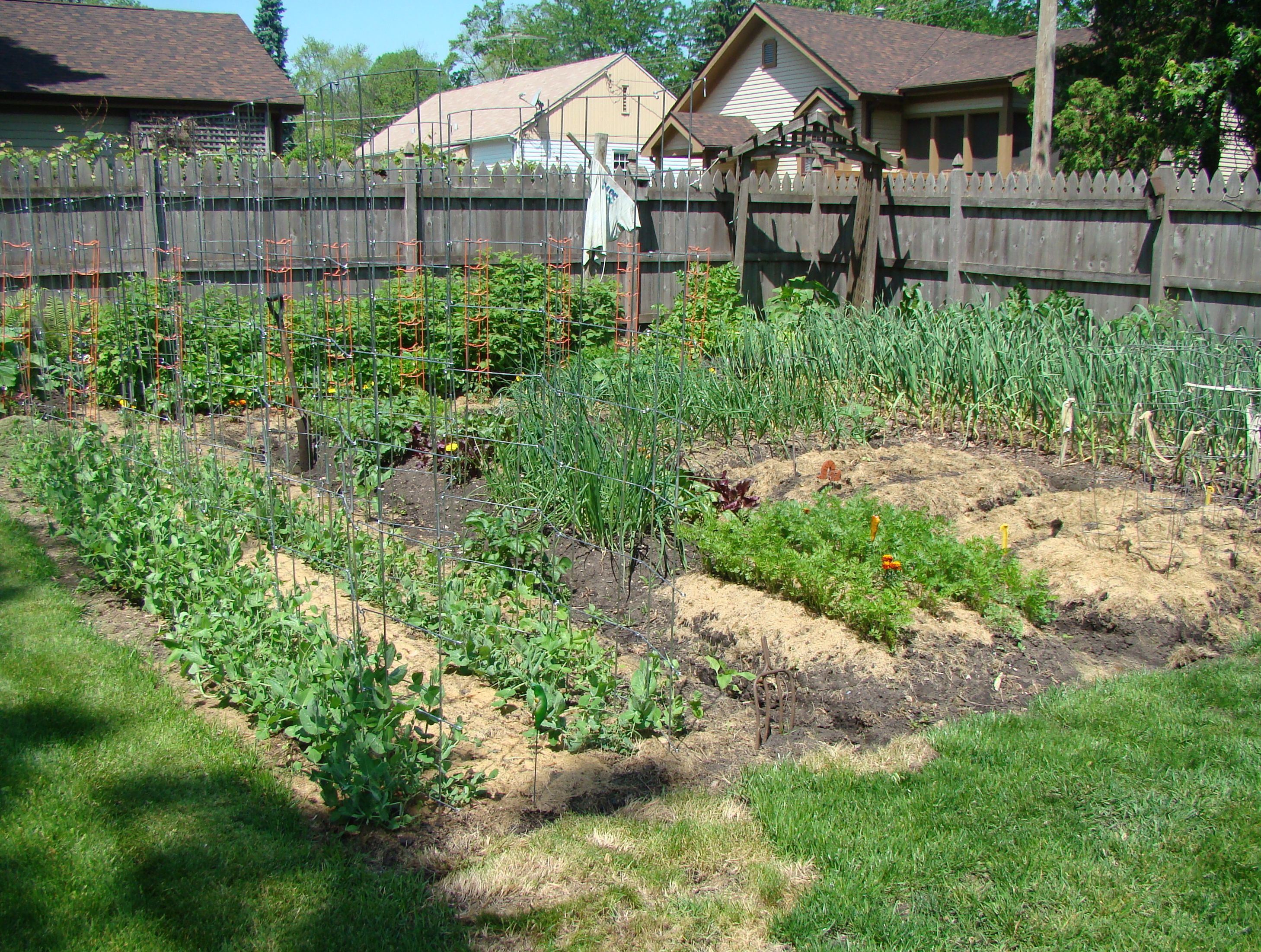 Leaf Mulch Vegetable Garden