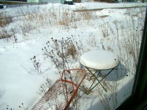 table on west side w: snow