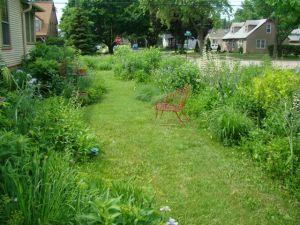 side yard June