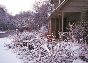 House w: snow