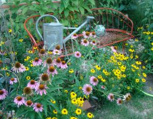side bench in august