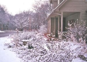 MAN house in snow