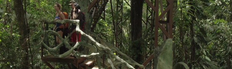 natural_mystic_travel_maquenque_treehouse_long