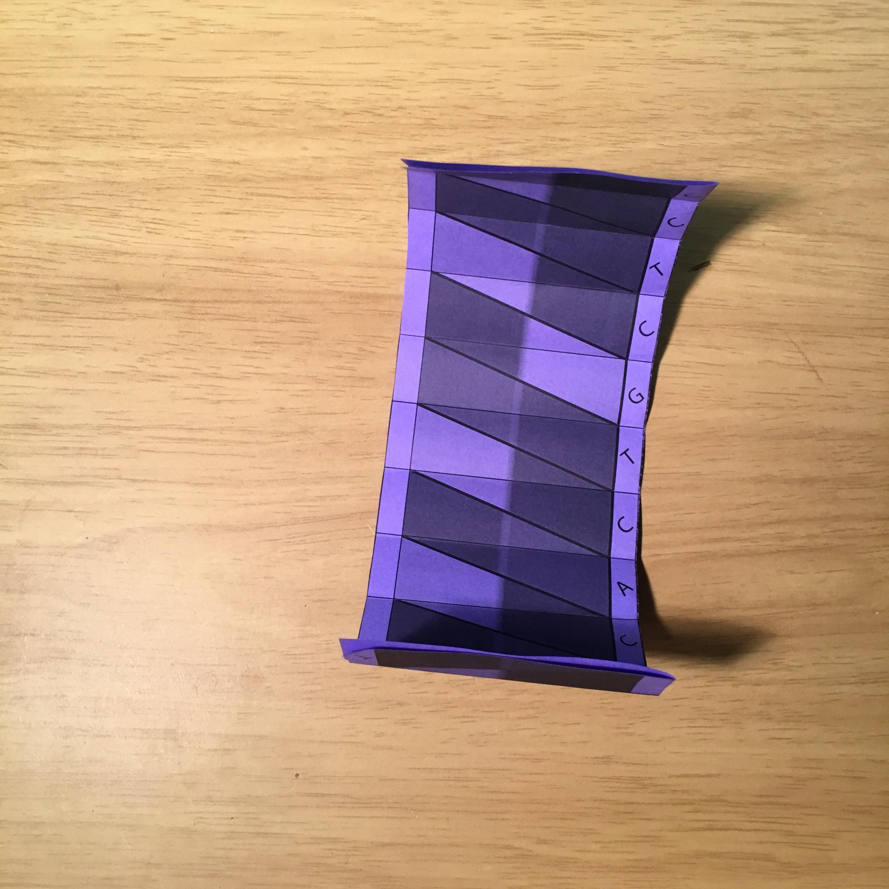 Dna Double Helix Model Origami