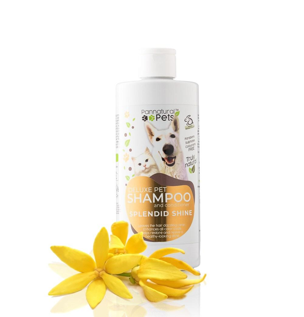 Premium Pet Shampoo, Pannatural Pet Shampoo, Colour Enhancing Dog Shampoo, Premium Dog Shampoo, Nature's Magic Shampoo, Pannatural Pets Nature's Magic, Ginger Shampoo, luxurious shampoo