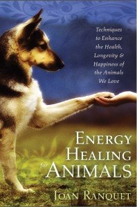 Energy Healing Cover