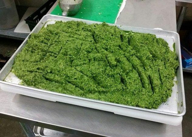 Organic Green Veggies 800