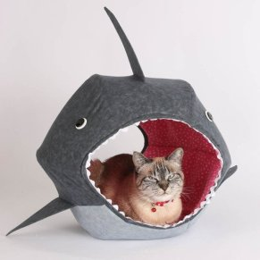 TheCatBall_shark__35_large