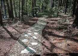 beautiful stone path through wooded yard