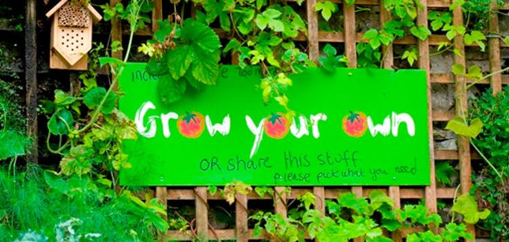 garden_food_guerilla_ns_article_735_350