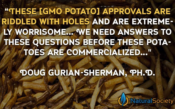 genetically modified potatoes french fries Food Scientists: New GMO Potatoes Extremely Worrisome