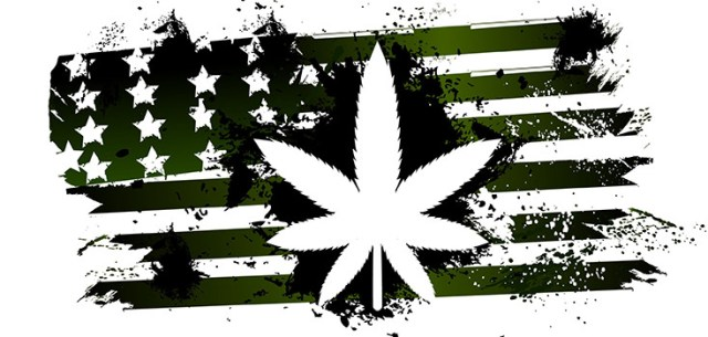 Graphic of a green, black and white American flag, with a large outline of a marijuana leaf in the middle
