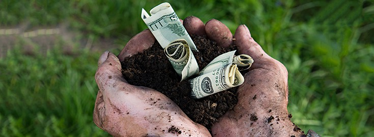 money farmer crops 735 270