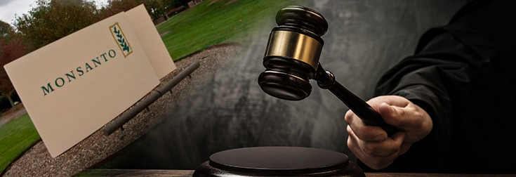 monsanto-court-gavel-judge-lawsuit-735-250