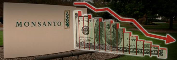 Monsanto profits fall