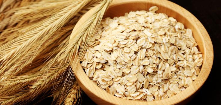 oats_bowl_735_350