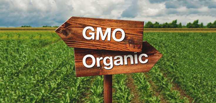 organic-gmo-field-farm-land-735-350