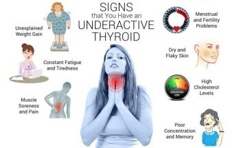 What are the functions of your thyroid?