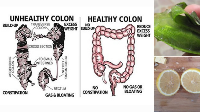 Best Foods For Colon Cleansing Natural Solutions Magazine