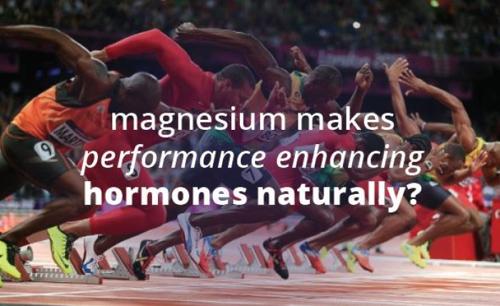 Magnesium testosterone connection