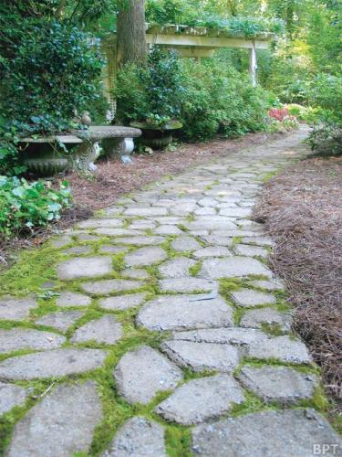 Asheville Lawn Care - Create a path of your dreams