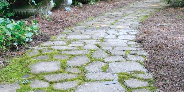 How to personalize your backyard with a beautiful concrete path