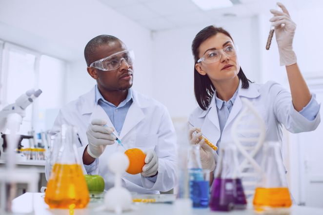 Genetically Modified Food in Lab