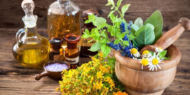 What Herbs Promote Healing