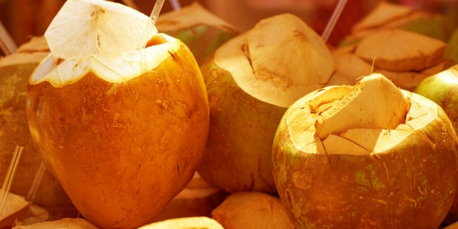Can You Drink Too Much Coconut Water