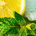 How to Enjoy Awesome Lemon Balm Benefits_Title