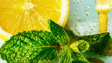 How to Enjoy Awesome Lemon Balm Benefits_Title