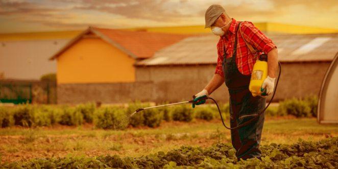 Non GMO vs. Organic_Types of Pesticides