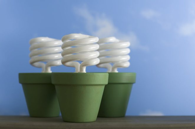 Cut energy costs potted light bulbs