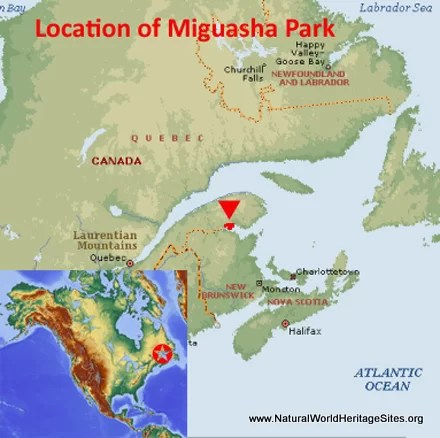 Miguasha national park natural world heritage sites factfile gumiabroncs Images