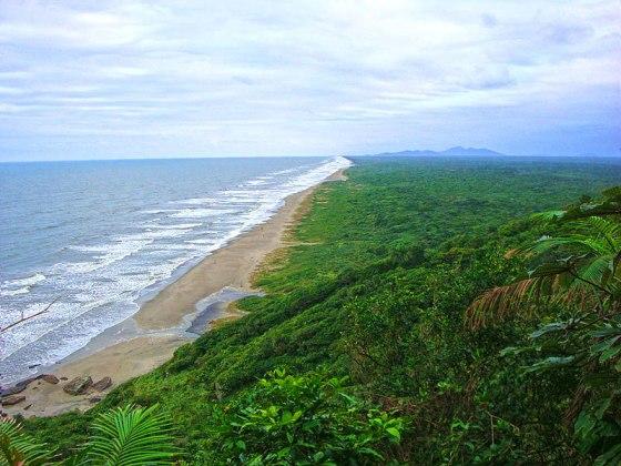 Iguape - Praia da Juréia - Foto