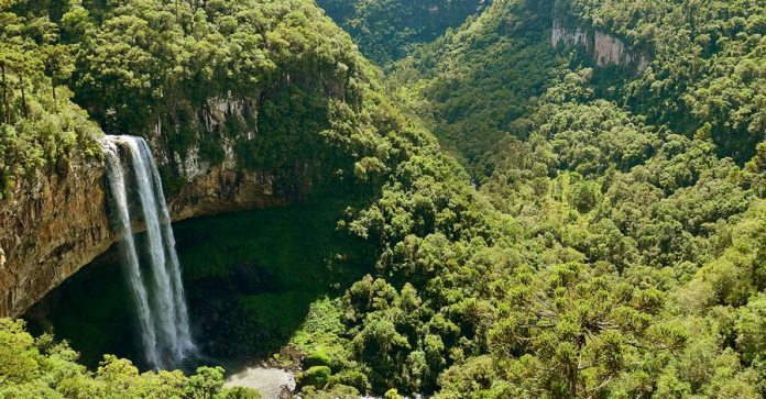 Cascata do Caracol - Canela RS foto