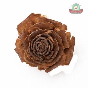Fa rózsa