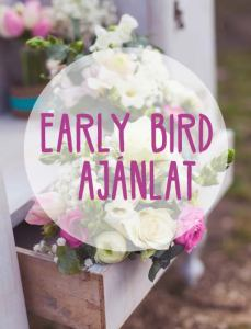 naturdekor_early_bird_ajanlat